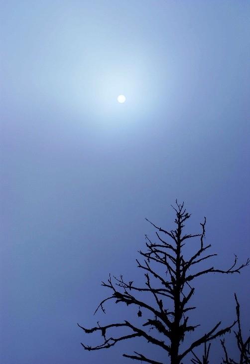 星星月亮太阳歌词
