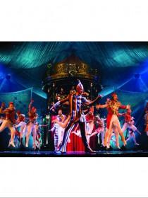 Cirque du Soleil(太阳马戏团)