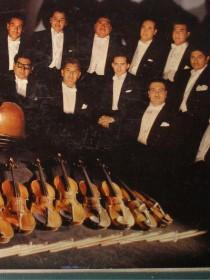Los Violines de Villafontana De Roberto Perez V