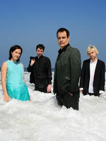 Wedding Present, The