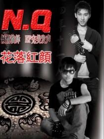 N.Q组合