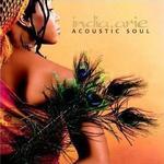 Acoustic Soul详情