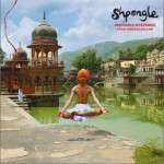 Ineffable Mysteries From Shpongleland试听