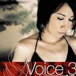 Voice 3 L.V 醉爱情歌全辑详情