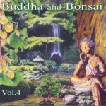 佛陀和盆景系列 Buddha and Bonsai vol4详情