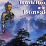 佛陀和盆景系列 Buddha and Bonsai vol2详情