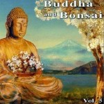 佛陀和盆景系列 Buddha and Bonsai vol5详情
