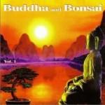 佛陀和盆景系列 Buddha and Bonsai vol1详情