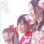 桜の栞 (樱花书签)详情