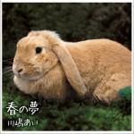 春の夢 (Single)详情