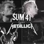 Sum 41 dose Metallica详情