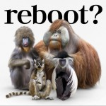 reboot ~あきらめない詩~ / 流れ星 (Single)详情
