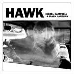 Hawk详情