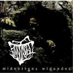 Midnattens Widunder详情