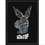 1辑 - GD & TOP详情