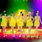 青春美少女经典翻唱(三)详情