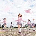 桜の木になろう(Type B) (single)详情