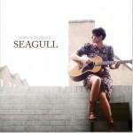 Seagull详情