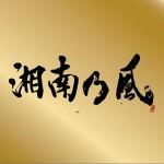 """湘南乃風 ~Single Best~表BEST""""金""""盤详情"""