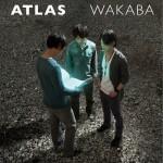 Atlas详情