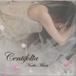 Centifolia -noriko Mitose Art Works Best-详情