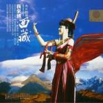 我来到西藏详情