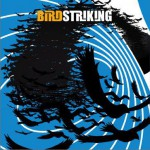 Birdstriking详情