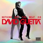 Nothing But the Beat 2.0详情