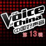 中国好声音 第一季 第十三期详情