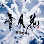雪月花 (Single)详情