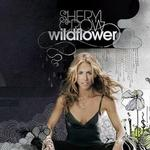 Wildflower详情