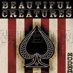 Beautiful Creatures详情