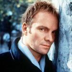 斯汀Sting(当当网棒系列)详情