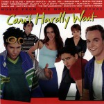 Can't Hardly Wait详情