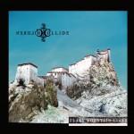 Glass Mountain Liars - Bonus acoustic track详情