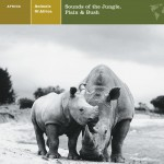 ANIMALS OF AFRICA Sounds of the Jungle, Plain & Bush详情