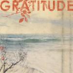 Gratitude (U.S. Version)详情