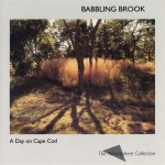 A Day On Cape Cod: Babbling Brook详情