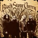 Black Stone Cherry详情