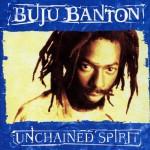 Unchained Spirit详情