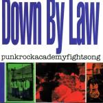 punkrockacademyfightsong详情