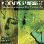 Meditative Rainforest详情