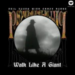 Walk Like A Giant详情