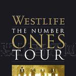 The Number Ones Tour 真情冠军演唱会