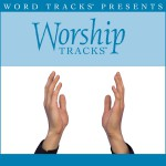 Worship Tracks - Holy Roar - as made popular by Watermark [Performance Track]详情