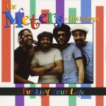 Funkify Your Life: The Meters Anthology (US Release)详情