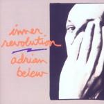 Inner Revolution (US Internet Release)详情