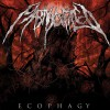 Martyr Defiled Flawless (Album Version) 试听