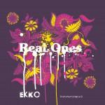 Ekko (instrumental opus 1)详情