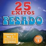25 Exitos Pesados (Vol. 1) (USA)详情
